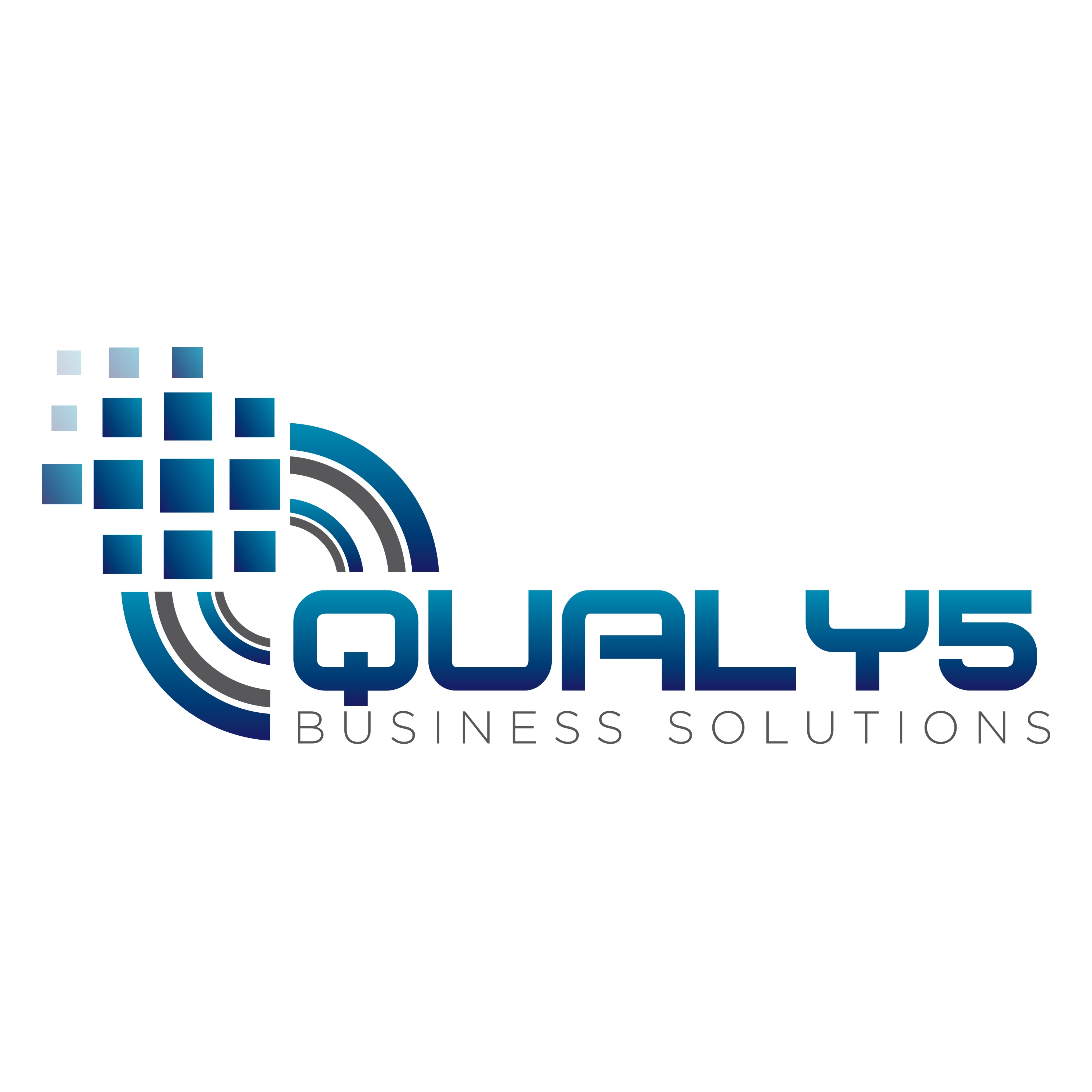 Qualy5 Business Solutions logo